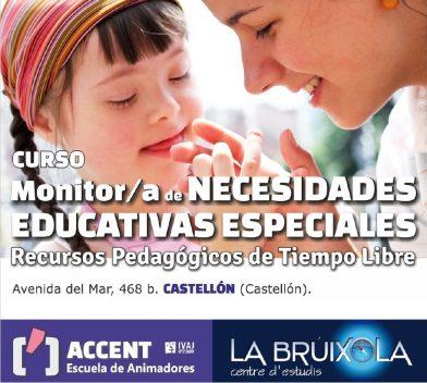 Curso Monitor de Necesidades Educativas Especiales